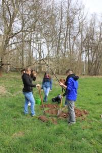 Baumpflanzung 2015 (53a)